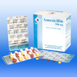 Can I give my cat Amoxicillin?
