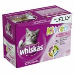 Can I Give My Cat Kitten Food?